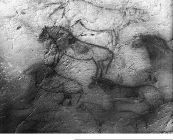 Стена лошадей. Пещера Экаин. Франция