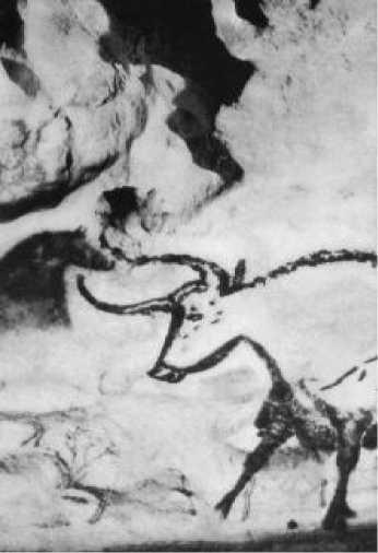 Бык. Пещера Ласко. Франция