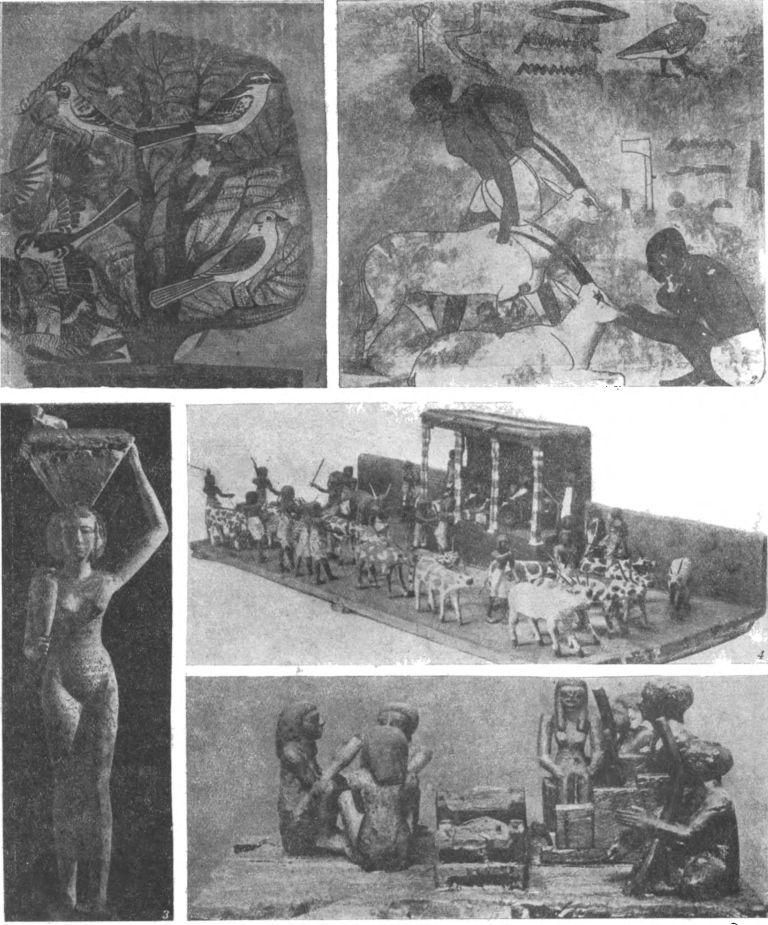 Таблица 28. Искусство Среднего царства. 1. Птицы, фрагмент росписи на стене гробницы Хнумхотепа в Бени-Хасане (XII династия).— 2. Кормление газели, роспись на стене гробницы Хнумхотепа в Бени-Хасапе (XII династия).— 3. Носильщица, деревянная статуэтка из гробницы в Снуте (XI или XII династия; высота 1,04 м).— 4. Осмотр стада, деревянная скульптура из гробницы в Сиуте (XI династия; длина подставки 1,73 м; каирский музей).— 5. Музыканты, деревянная раскрашенная скульптура из Саккара (XIII династия; каирский музей).